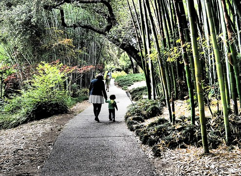 Mother and child walking through a japanese garden.